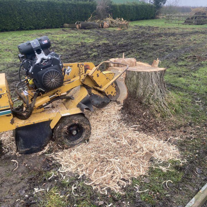 Stump grinding Spalding